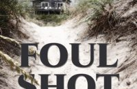 Foul Shot – a New P.I. Novel by Mystery Writer  D.L. Coleman @DanLColeman1